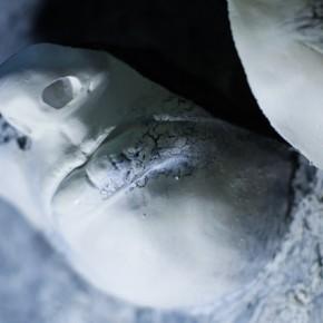 Маски лица (F5).